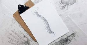 Az emberi gerincvelő felépítése és működése