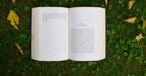 Flaubert – Realizmus és naturalizmus