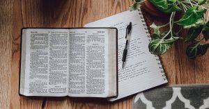 A szövegösszetartó erő – áttekintés