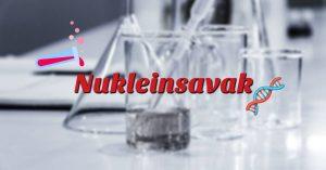 A nukleinsavak, nukleotidok
