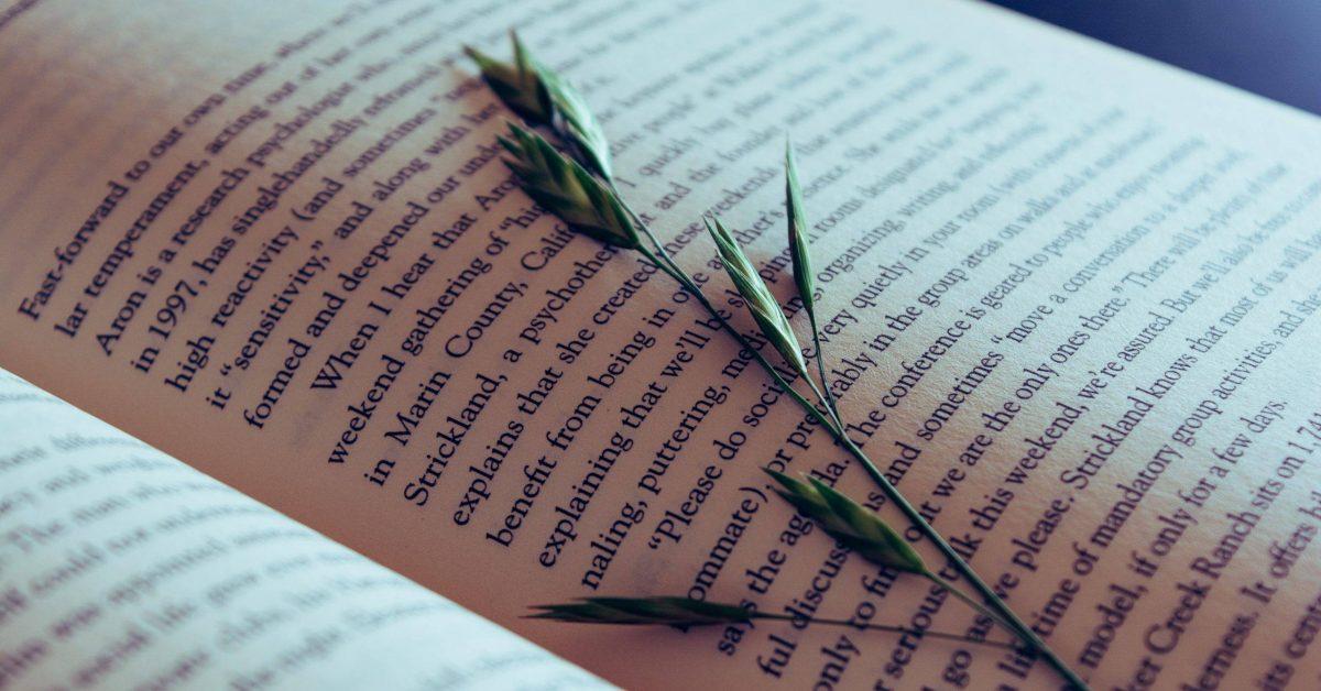 leaves on book
